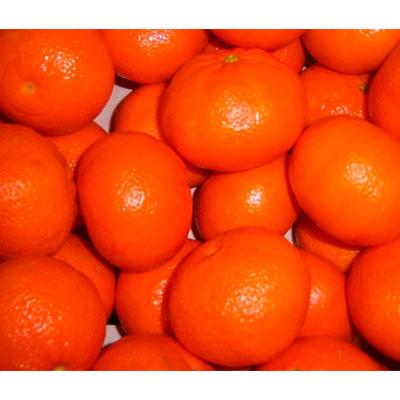 Мандарины сладкие Испания 1 кг