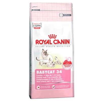 Babycat milk корм royal canin
