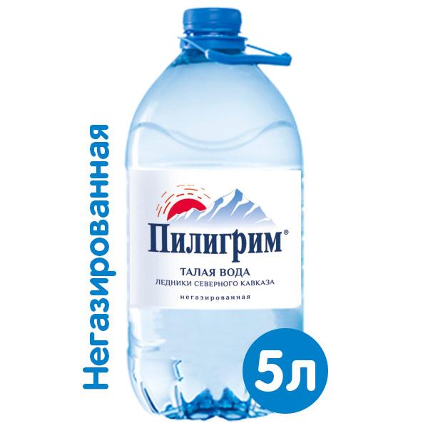 Вода Пилигрим 5 литров, 2 шт. в уп.